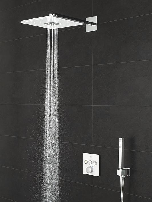 Hervorragend Für Ihre Dusche | GROHE AA87