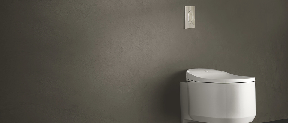 For Wc Urinal Bidet For Your Bathroom Grohe