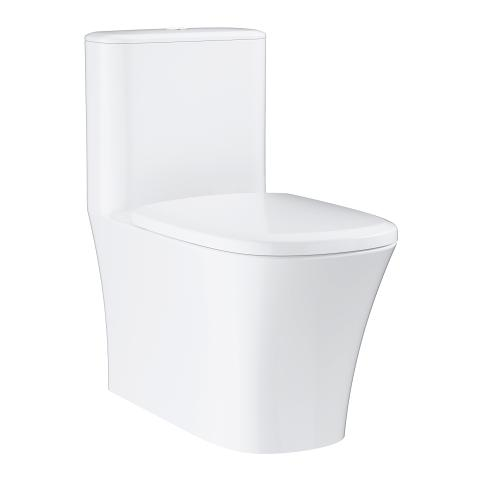 Floor standing 1 piece toilet