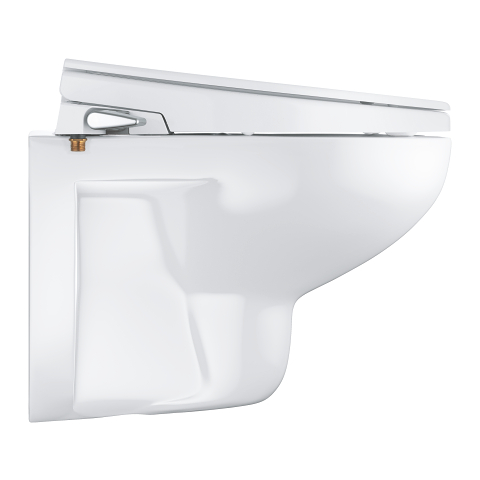 Grohe Toilet Accessoires Set.Bau Ceramic Manual Bidet Seat 2 In 1 Set Wall Hung Grohe